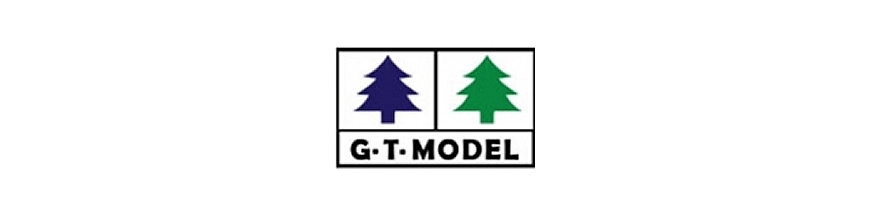 G.T Model / Quing song